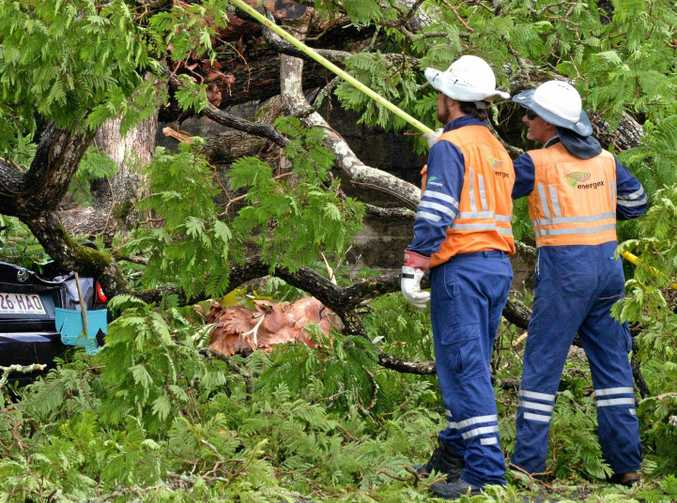 The storms of 2013 made a mess in the Sunshine Coast and Wide Bay, where Energex personnel worked to free powerlines from a fallen tree in Gympie.