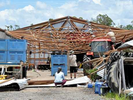 Residents in the Beerwah area clean up after a powerful storm uprooted trees. Scott Dorman's pineapple farm suffered damage after strong winds ripped the machinery shed apart and landed 200m away.