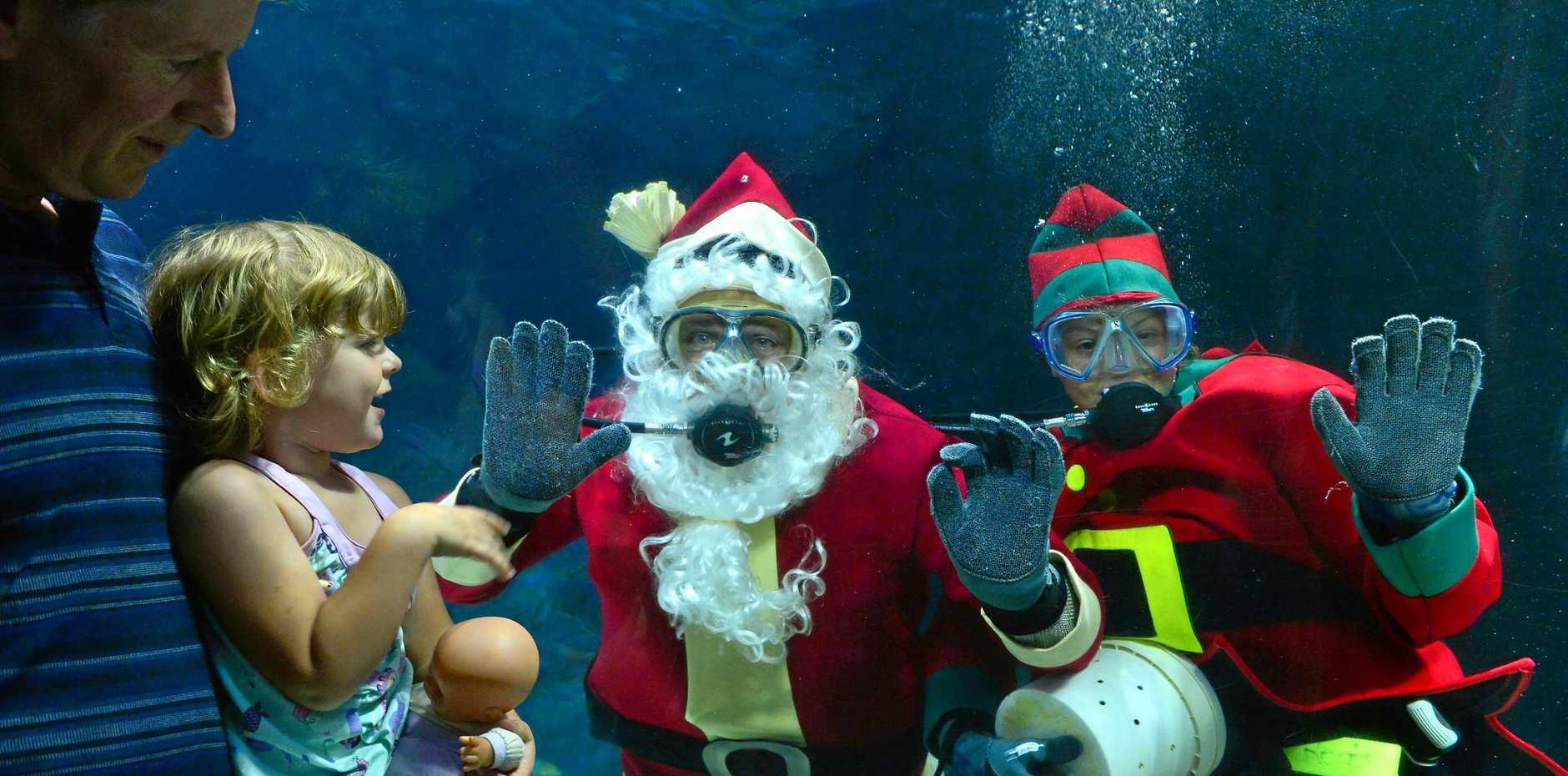 FESTIVE SPLASH: It's Christmas at Sea Life in Mooloolaba as Scuba Santa and a Scuba Elf arrived. John and Charlotte Stewart watch through the glass..