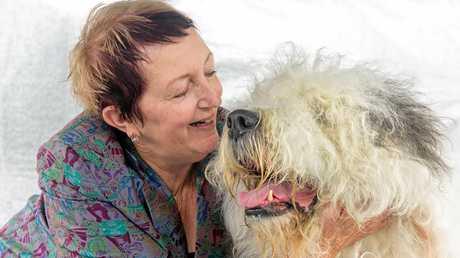 Wendy Boniface of Brisbane with her old english sheepdog
