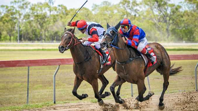IN CONTENTION: Rockhampton's Petite Elle, ridden by Pietro Romeo, edges out Calliope-trained Salty's Boy, ridden by Mark Barnham, in race two last Saturday in Gladstone.