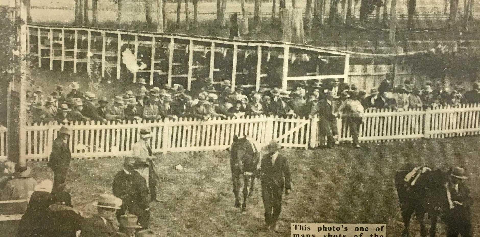 BELOW: The saddling enclosure at an Orara Jockey Club meeting at the former South Course on July 22, 1931. Photo from Atkins family.