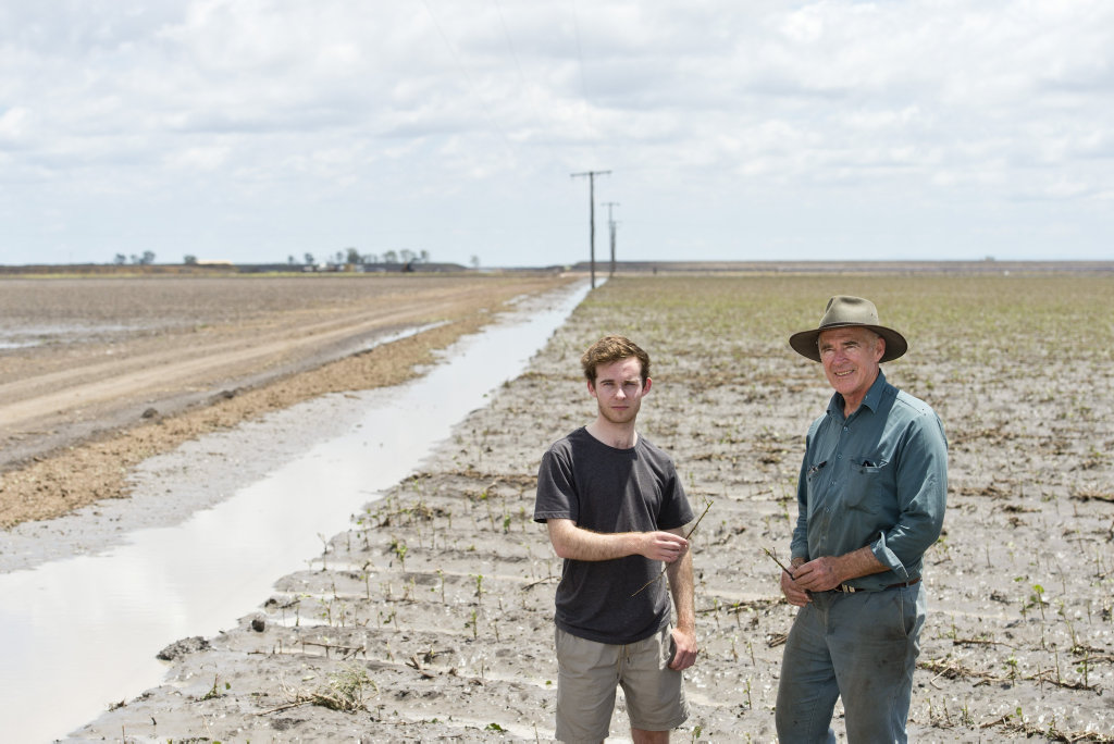 Daniel Scott and his father David Scott inspect the remains of their hail damaged cotton crop on the Cecil Plains farm, Wednesday, December 27, 2017.
