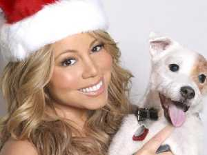 Staggering amount Mariah earns from Christmas hit