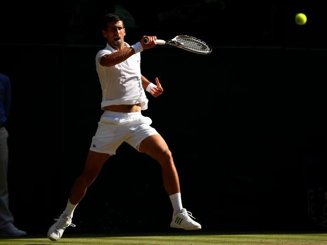 Novak Djokovic at Wimbledon this year.