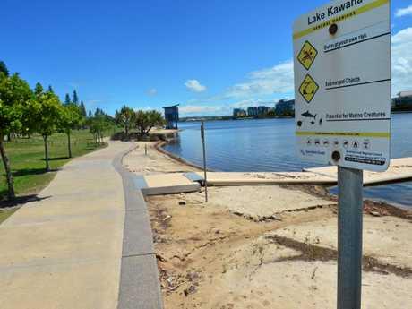 BULL SHARKS: A council sign at Lake Kawana warning of sharks.