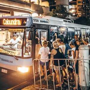 Free buses to celebrate NYE on Coast in style | Sunshine Coast Daily