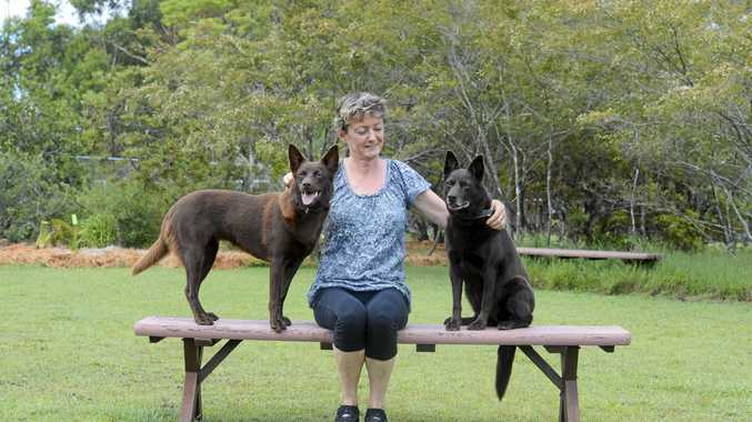 TWO DECADES OF BREEDING: Mandy Sansom with her dogs Vixen, 13 months, and Ruby, 12 years.