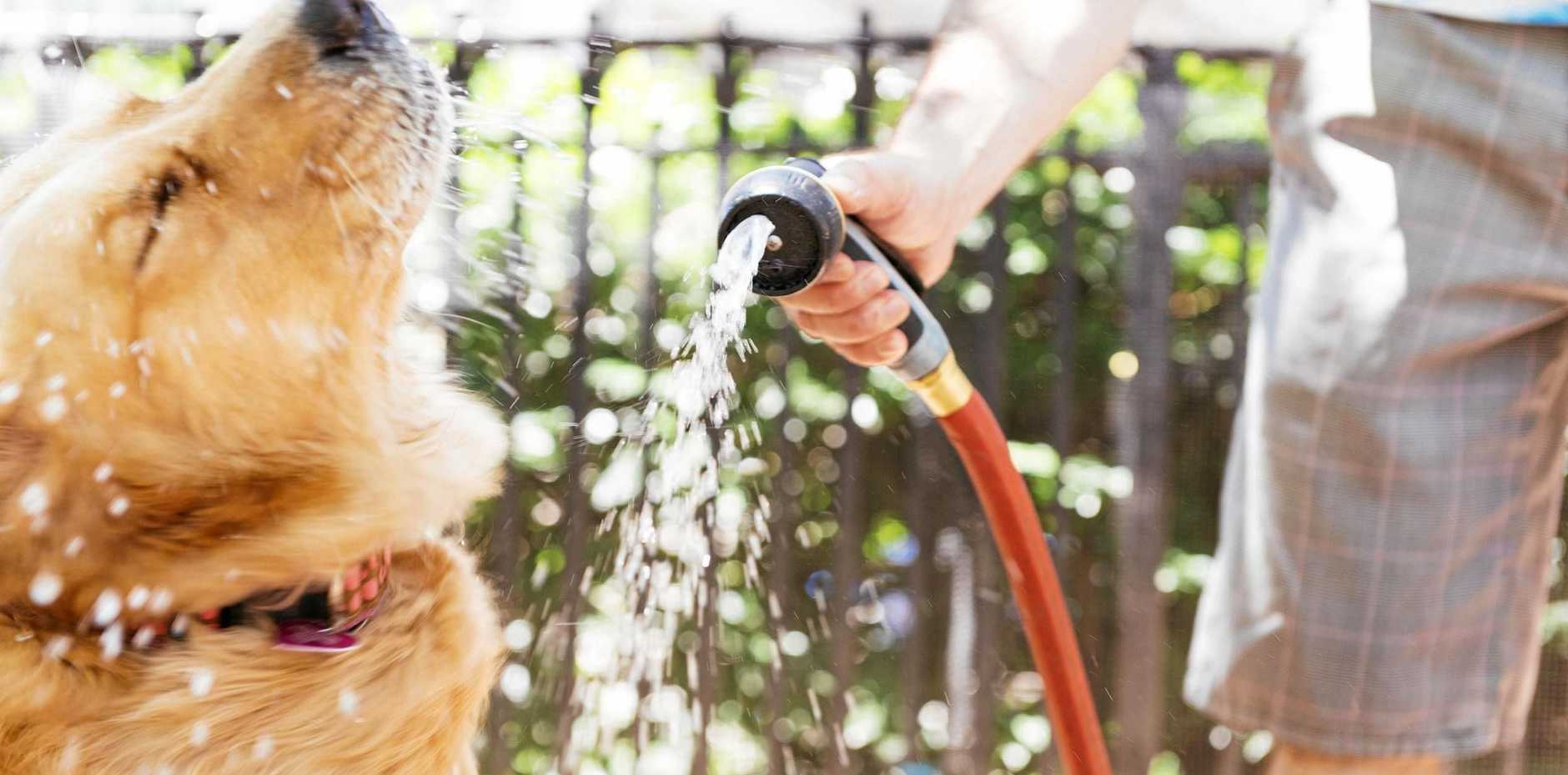 WATCH OUT: It's important to keep an eye on people vulnerable to heat illness during summer.