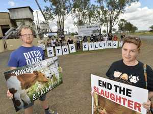 Animal activists protest outside Beef City