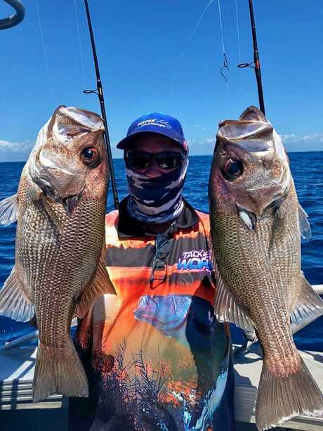 TWINS: Noel Rossiter caught some great fish including a couple of beautiful pearl perch off Double Island Point. Noel hosts the Southern Queensland Fishing Facebook pages, and caught these from a charter.