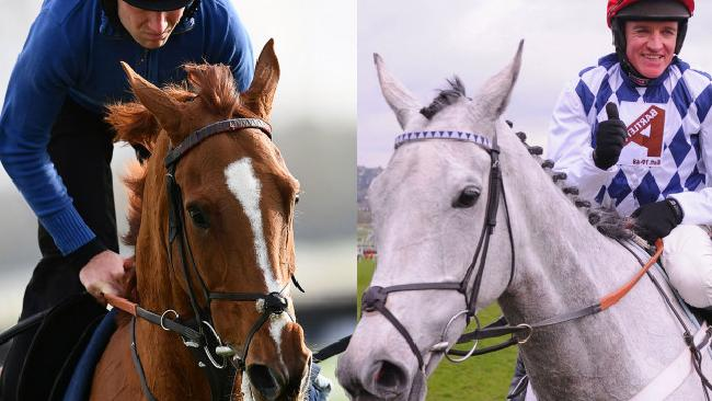 Champion racehorses Trioli D'Alene and Simonsig.