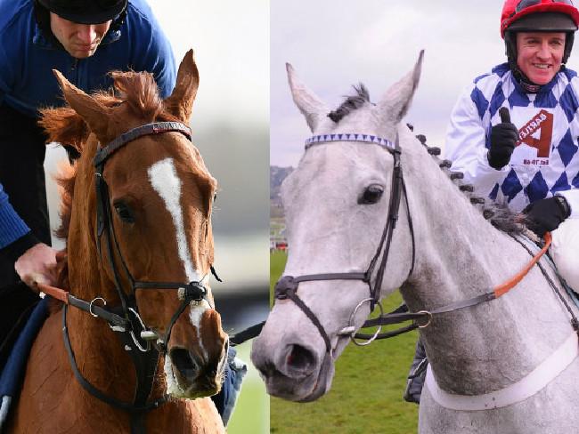Champion racehorses Trioli D'Alene and Simonsig.