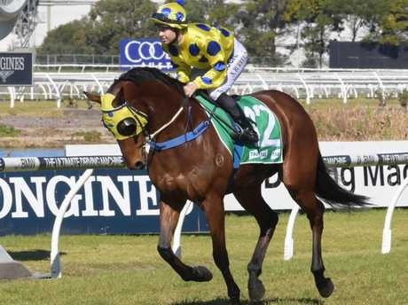 Nyssa Burrells on Royal Abbey at Randwick this year. Picture: Simon Bullard