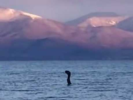 The creature was filmed in the Albanian section of the Great Prespa Lake. Picture: CEN/Australscope
