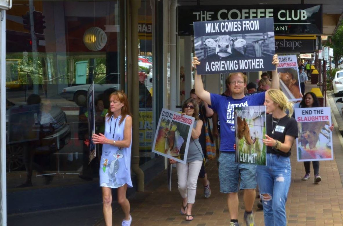 The animal rights activists on Margaret Street in Toowoomba.