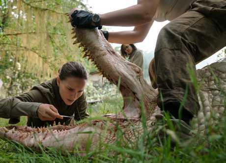 Natalie Portman and Tessa Thompson in a scene from the movie Annihilation.