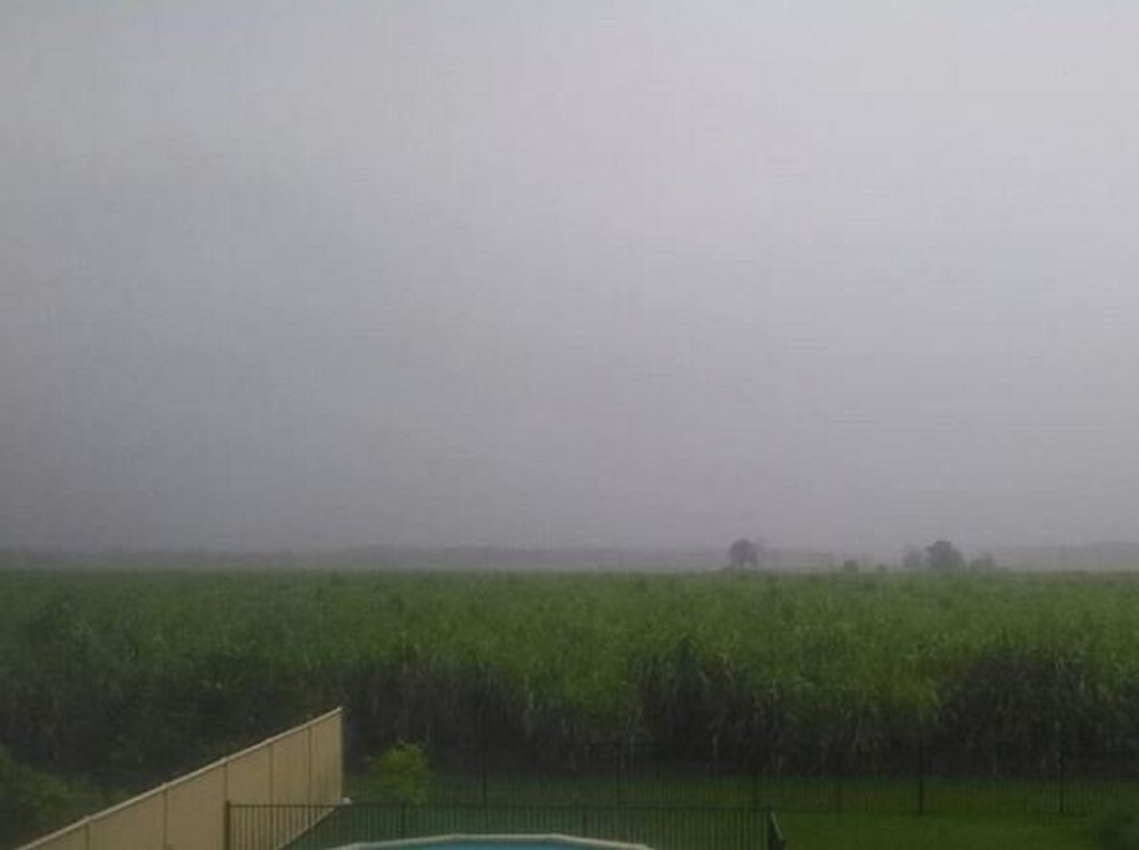 Heavy rainfall over the cane fields in Woodburn.