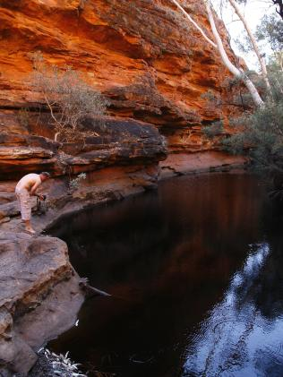 The Garden of Eden at Kings Canyon.