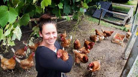 Nineteen chickens keep Lydia busy but provide a good dose of eggs. Photo/ Stuart Munro