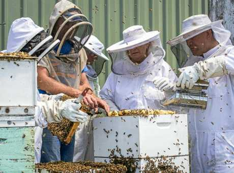 Paul Marsh, commercial beekeeper with Bee2U shows his students techniques for managing hives and honey extraction.