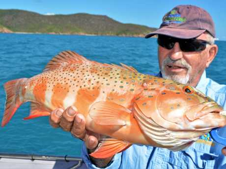 TROPICAL TREASURE: Local lad and Reel Addiction regular Rob Lloyd-Lewis with a nice coral trout.