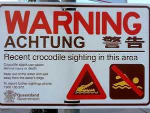 Croc closes Mackay Harbour beach