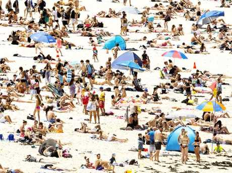 Bondi Beach will likely look a lot like this on Saturday and Sunday. Picture: Jenny Evans