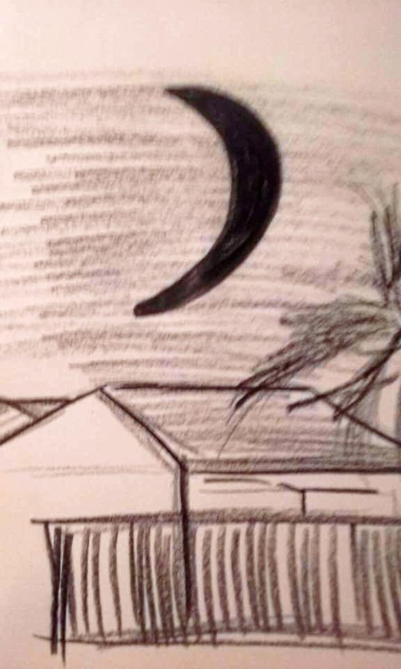 A sketch based on the eyewitness account of an unidentified flying object (UFO) near Hervey Bay, Queensland.