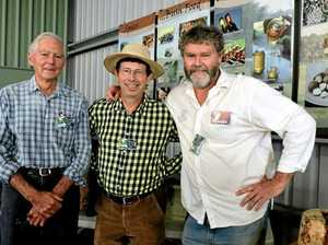How Gympie bee keepers are helping save the nation's farmers