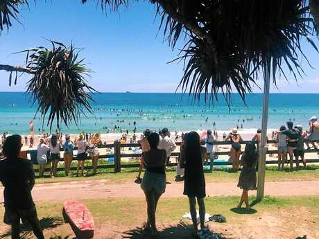 A paddle out into the surf was held in honour of slain Byron Bay DJ, Chris Badley, on Saturday.