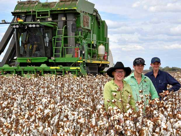 SCHOLAR: Lucynda Anderson, Hamish Hutchings and Cameron Hosking scholarship winners completing their practical agricultural studies, harvesting the Emerald Agricultural College 2017 cotton crop.