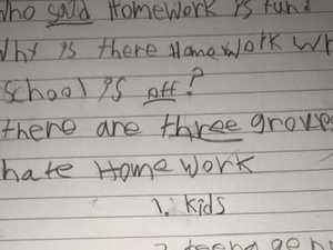 Kid's brutal homework response