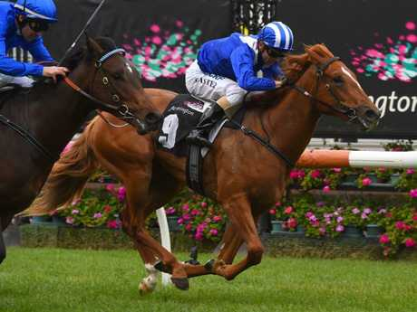 David Hayes says his team has deliberately set Nomothaj to win the Magic Millions first-up. Picture: Getty Images