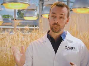 Lee Hickey explains speed breeding