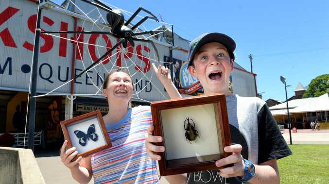 Mia and Ryan Sheehan are excited for the Insectarium display at the Workshops Railway Museum.