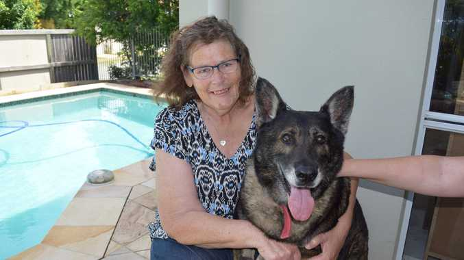 Elke the German Shepherd whose owner died of cancer has found a new home with Heather Ford (pictured) and her husband Greg.