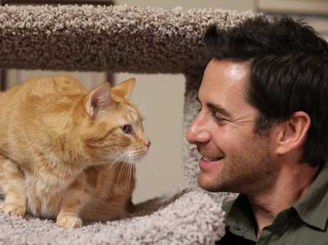 My Big Fat Pet Makeover host Travis Brorsen with Thor sitting on his cat tree.