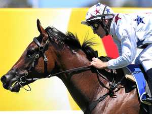 Sunlight forecast to shine in Magic Millions 2YO Classic