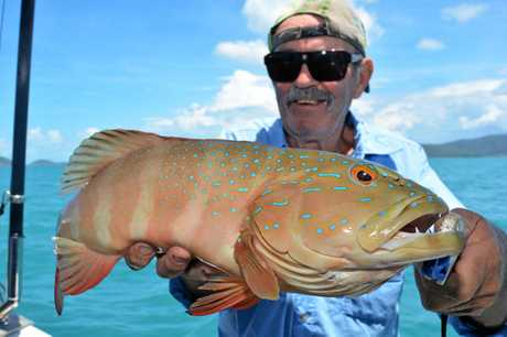 Bazza Wallace was pretty happy out trumping the rest of the crew with this coral trout landed with Reel Addiction Sport Fishing.