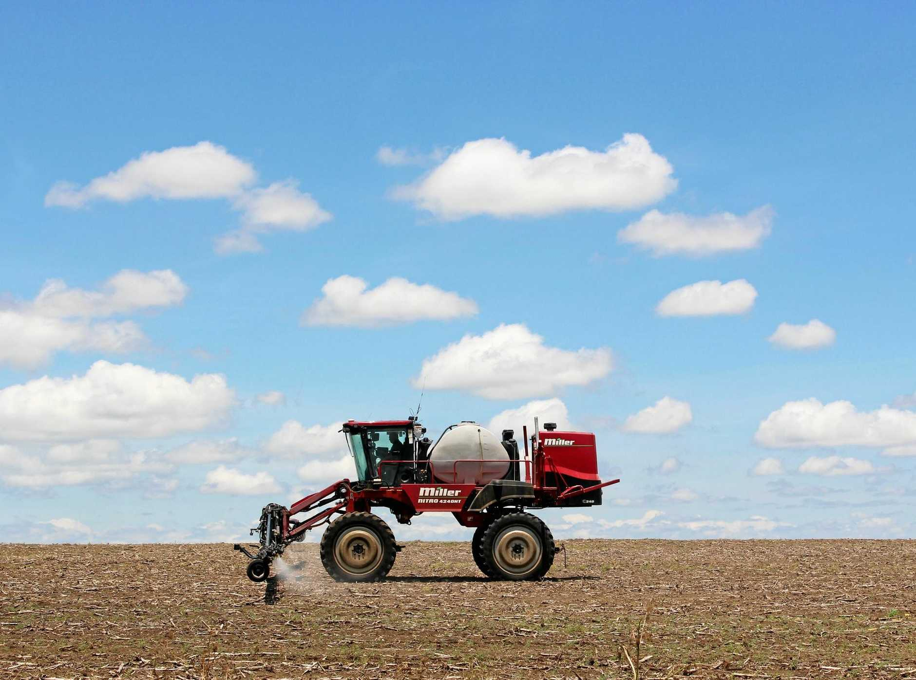 Rod Petersen of Petersen Grains spraying roundup to kill weeds before planting a field of mung beans.