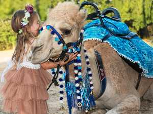 Camel ride operator silences animal rights protesters