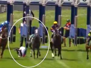 Horse backed from $6.50 into $3 throws jockey off