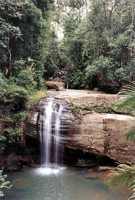 Buderim Falls, Buderim Forest Park, Buderim, 2007