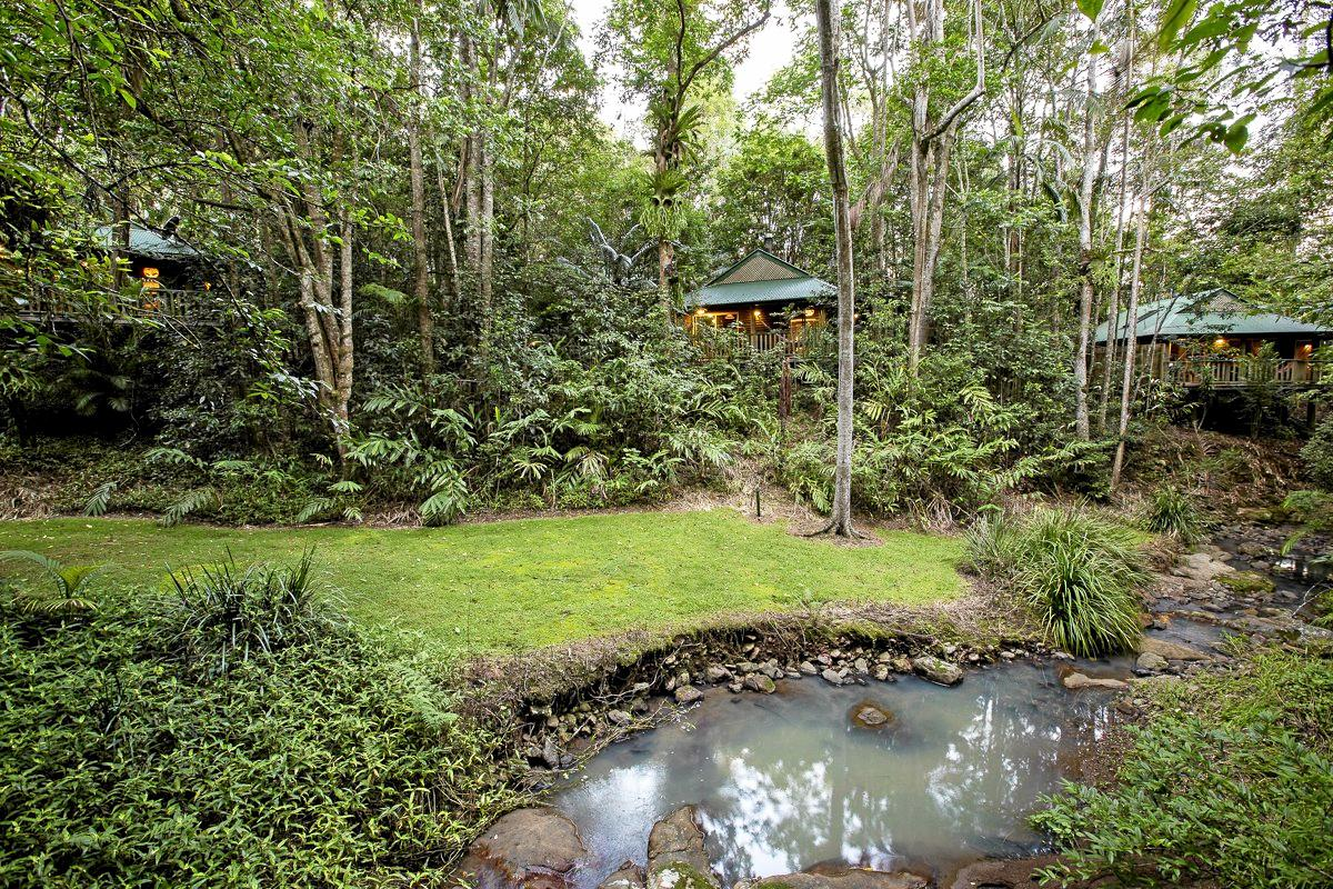 TAKING ACTION: Visit Sunshine Coast deputy chair Mark Skinner owns Narrows Escape Rainforest Retreat.