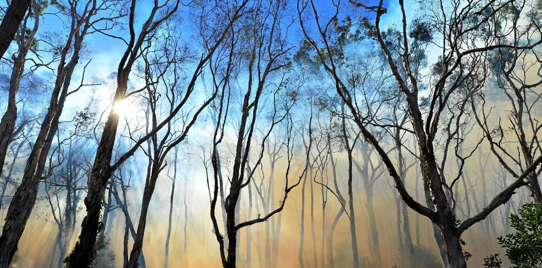 Rural Fire Service warns parts of the region are expected to experience a very high fire danger this weekend.