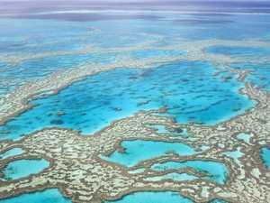 Fisherman cop one-year reef ban