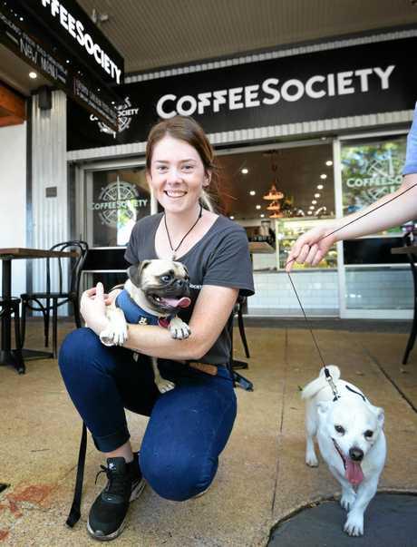 Percy, Koda and waitress Quara Swanepoel at CoffeeSociety.