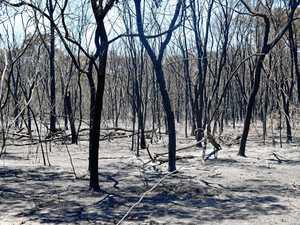 Warwick fire 'most dangerous I've ever seen'