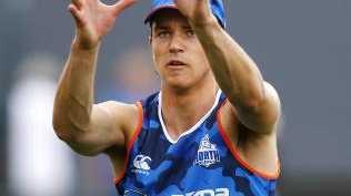 Luke Davies-Uniacke at North Melbourne training. Picture: Michael Klein